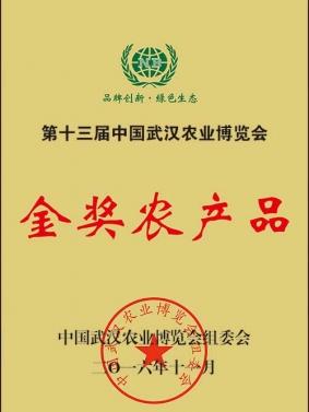武汉博览会金奖